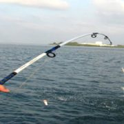deep-sea-fishing-charters-dubai-02
