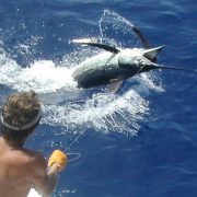 deep-sea-fishing-charters-dubai-04